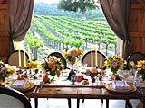 Click here to visit the Travelers411 Directory for Hammersky Vineyards