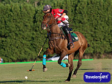 Click here to visit the Travelers411 Directory for Saratoga Polo Association
