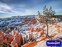 Click here to visit the Travelers411 Directory for The Lodge at Bryce Canyon