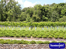 Click here to visit the Travelers411 Directory for Ulster County Tourism