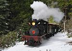 Locomotive #15 running with train in the snow!