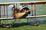 Old Rhinebeck Aerodrome Museum: See antique aircraft in flight at airshows Sat. & Sun. 1913 Caudron Credit Gilles Aliard