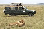 Browse and discover - http://www.kili-tanzanitesafaris.com -Tanzania safari trips in Tanzania include 4 x 4 game drives, walking safaris in...