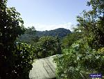 View from the top of Belcampo Lodge in Punta Gorda, Belize.