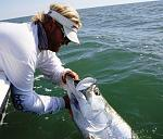 Fly fisherman out of the Plantation on Crystal River Adventure Center are lucky out in King's Bay!