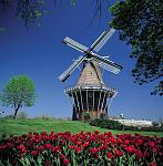 Windmill Island Gardens Photo Credit: Pure Michigan