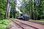 #45 Steam Engine in the Redwoods