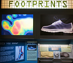 Forensic Science Gallery: Footprints  Photo Credit: Alcatraz East Crime Museum