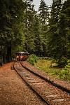 Railbus at Camp Mendocino
