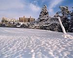 A snowy day at Belvedere House, a magical place to visit what ever the season.