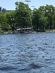 Cruising the Charles River