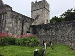 Muckross Abbey in the magical Killarney National Park