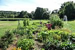 The Heirloom Garden is used for education purposes and cooking  demonstrations in our historic kitchen