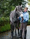 Connemara Equestrian Escapes