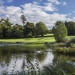 The golf course at Fota Island Resort