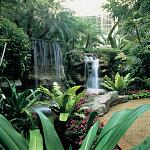 Waterfalls and winding pathways with beautiful plant life accent Gaylord Opryland's Garden Conservatory Atrium.