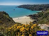 Join this group to discuss the island of Guernsey.  Guernsey sits in the English Channel just off the coast of Normandy, France. It is the second largest of the Channel Islands.