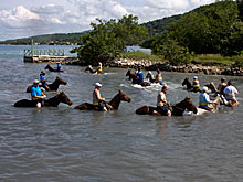 Sandy Bay Ranch Water Horseback Riding at Chukka Ranch in Jamaica.