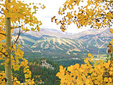 Looking at Breck Ski Resort through fall aspens.