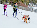 Cross country skiing in Mono County