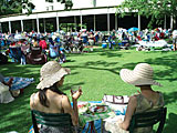 The lawn at Tanglewood.