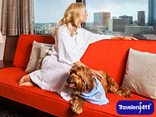 Hotel Derek in Houston, TX pet friendly hotel.